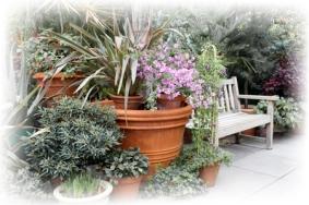 Botanic Hill Garden